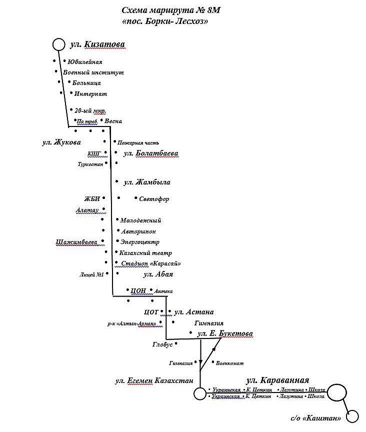 Еще один маршрут до дач добавили в Петропавловске, фото-1