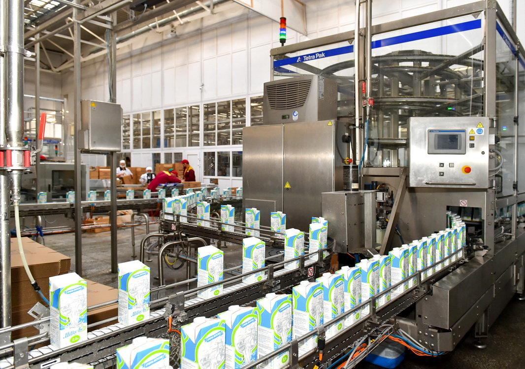 «Маслодел» запускает новую линию по упаковке ультра пастеризованного молока и сметаны, фото-6