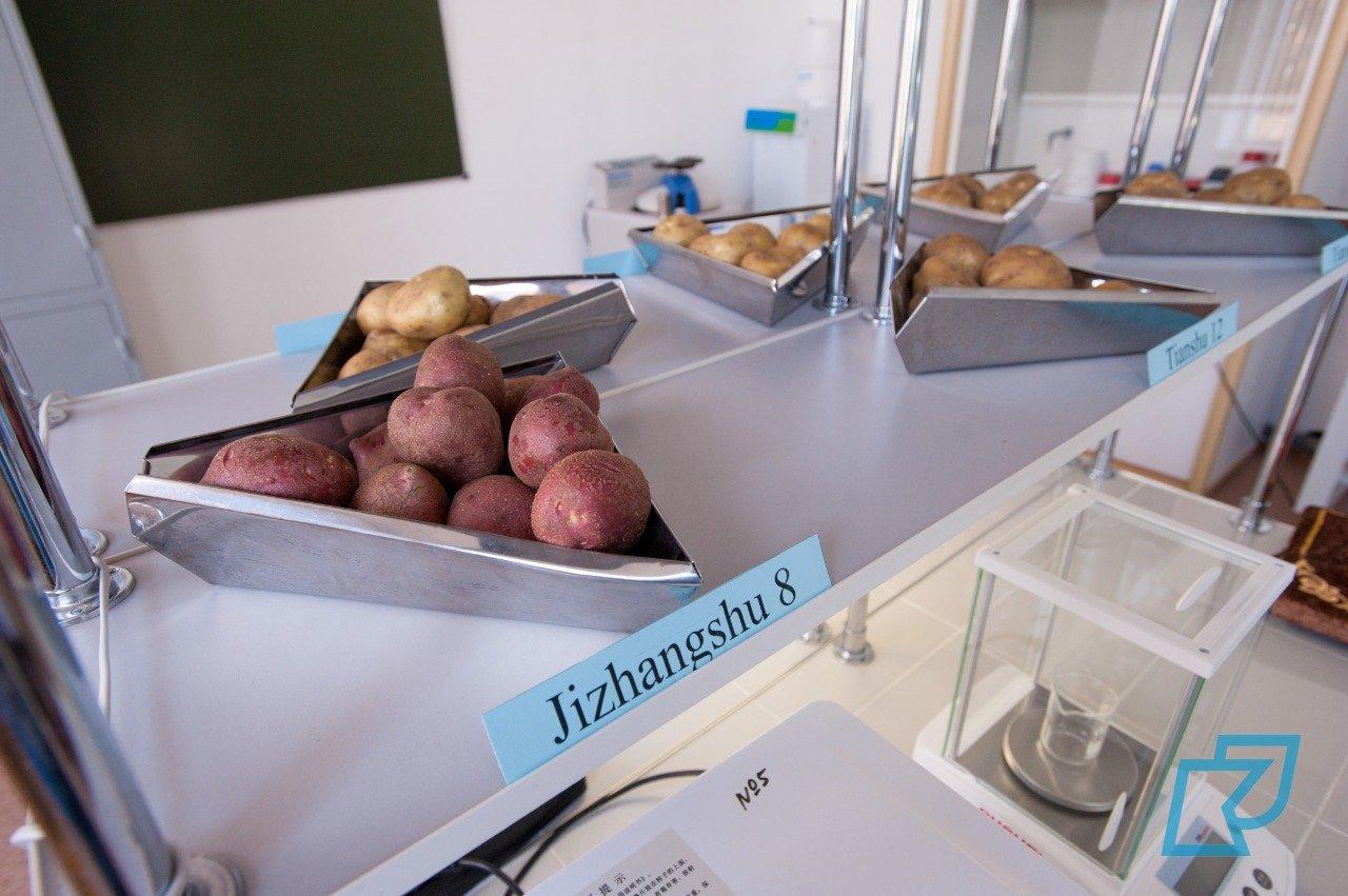 В Kozybayev University открылась казахстанско-китайская лаборатория, фото-3